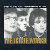 If You Want To Defeat Your Enemy Sing His Song by The Icicle Works