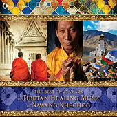 Play & Download The Tibetan Healing Music of Nawang Khechog by Nawang Khechog | Napster