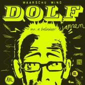 Oudejaars 2010 by Dolf Jansen