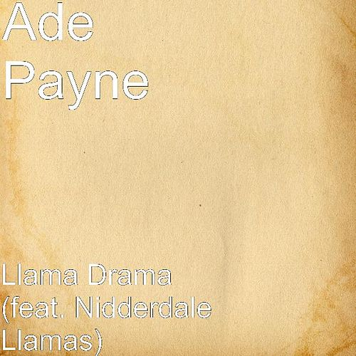 Play & Download Llama Drama (feat. Nidderdale Llamas) by Ade Payne | Napster