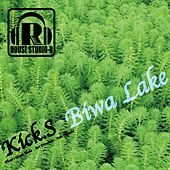 Biwa Lake - EP by The Kicks