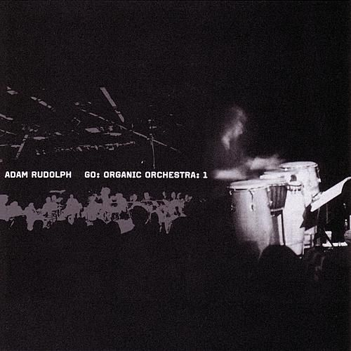 Play & Download Go: Organic Orchestra: Vol. 1 by Adam Rudolph | Napster