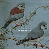 Play & Download Thieves by Shearwater | Napster