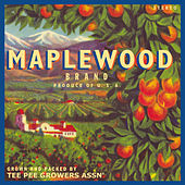 Play & Download Maplewood by Maplewood | Napster