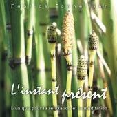 Play & Download L'instant présent : Musique pour la relaxation et méditation by Fabrice Tonnellier | Napster