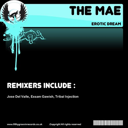 Play & Download Erotic Dream by Mae | Napster