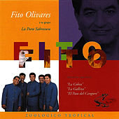 Play & Download Zoológico Tropical by Fito Olivares | Napster