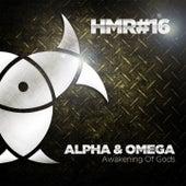 Awakening of Gods by Alpha & Omega