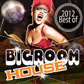 Bigroom House 2012 Best of by Various Artists
