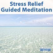 Play & Download Stress Relief Guided Meditation by Guided Meditation | Napster