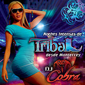 Noches Intensas De Tribal Desde Monterrey by DJ Cobra