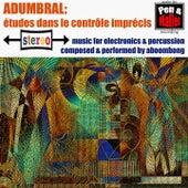 Adumbral: études dans le contrôle imprécis by Aboombong