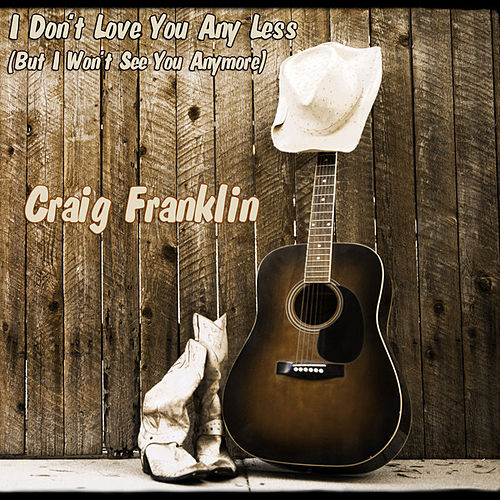 I Don't Love You Any Less by Craig Franklin