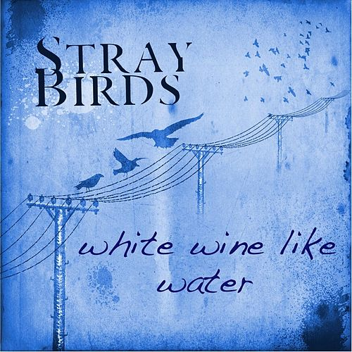 Play & Download White Wine Like Water by Stray Birds | Napster