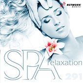 Spa Relaxation by Network Music Ensemble
