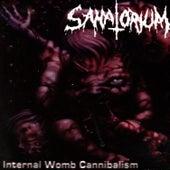 Internal Womb Cannibalism by Sanatorium
