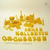Guaranteed Niceness by Sonar Kollektiv Orchester