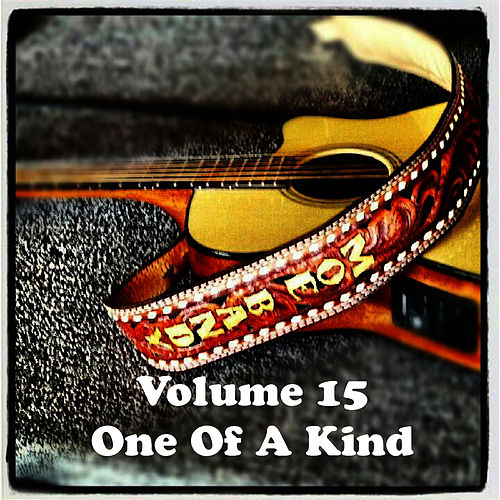 Volume 15 - One Of A Kind by Moe Bandy