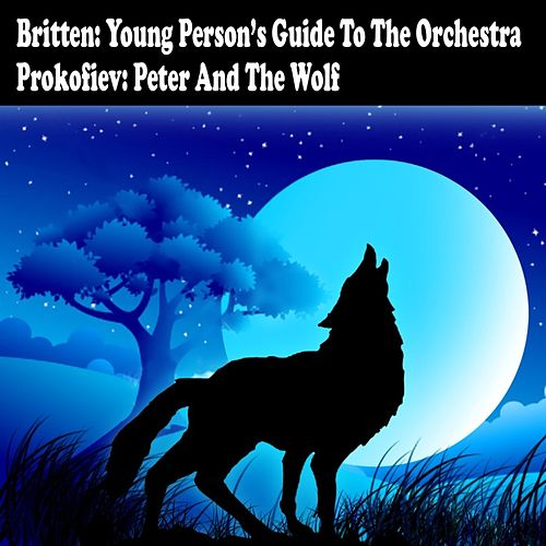 Play & Download Britten: Young Person's Guide To The Orchestra And Prokiev: Peter And The Wolf by Various Artists | Napster