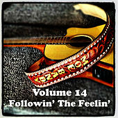 Play & Download Volume 14 - Followin' The Feelin' by Moe Bandy | Napster