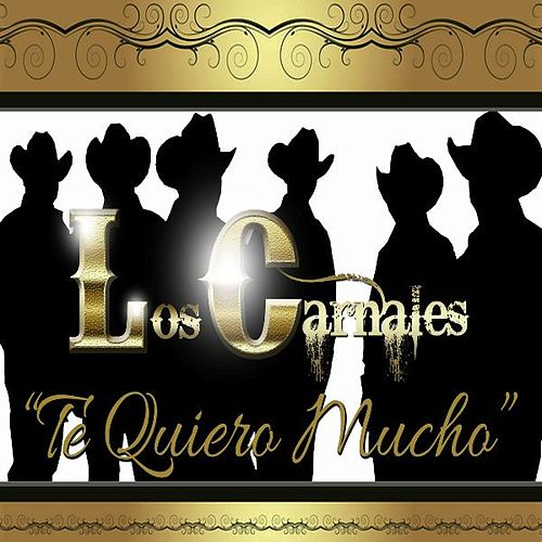 Play & Download Te Quiero Mucho by Los Carnales | Napster