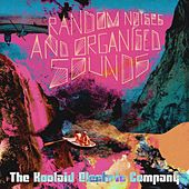 Random Noises and Organised Sounds by The Koolaid Electric Company