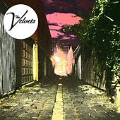 Shoot You Down by The Velvets