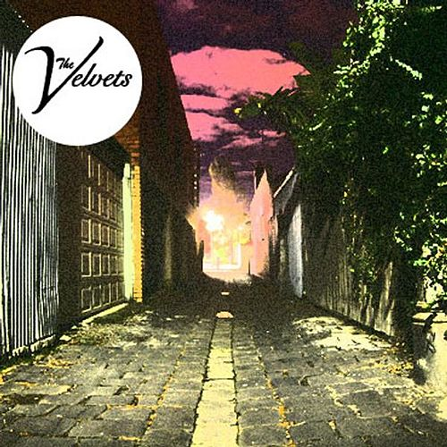 Play & Download Shoot You Down by The Velvets | Napster