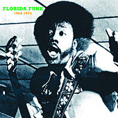 Florida Funk: Funk 45s from the Alligator State by Various Artists