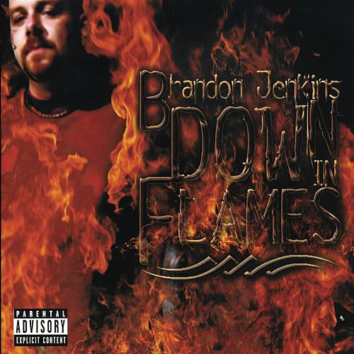Play & Download Down In Flames by Brandon Jenkins | Napster