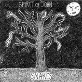 Snakes by Spirit of John