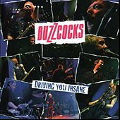 Play & Download Driving You Insane by Buzzcocks | Napster