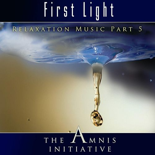 Relaxation Music, Pt. 5: First Light by The Amnis Initiative