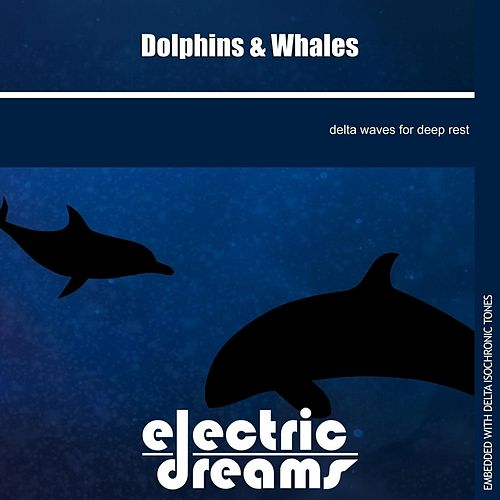 Play & Download Dolphins and Whales by Electric Dreams  | Napster