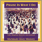 Play & Download Praise Is What I Do by Shekinah Glory Ministry | Napster