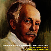 Play & Download Strauss: Selections by Vienna Philharmonic Orchestra   Napster