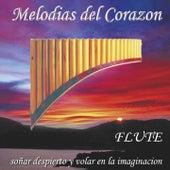 Play & Download Melodias del Corazon (Flute - Soñar Despierto Y Volar En La Imaginacion) by Wayra | Napster