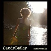 Northern Sky by Sandy Bailey