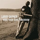 Here Gone Tomorow by Larry Garner