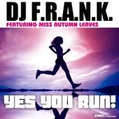 Yes You Run! Radio Edit by DJ Frank