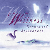 Play & Download Wellness (Träumen & Entspannen) by Various Artists | Napster