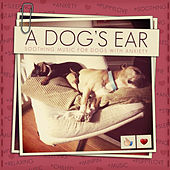 A Dog's Ear : Soothing Music for Dogs With Anxiety by Various Artists