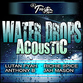 Play & Download Water Drops Acoustic by Various Artists | Napster