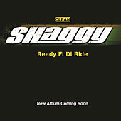 Play & Download Ready Fi Di Ride by Shaggy | Napster