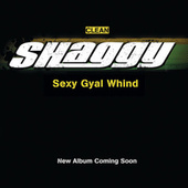 Play & Download Sexy Gyal Whind by Shaggy | Napster