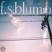 Play & Download Zweite Meer by F.S. Blumm | Napster