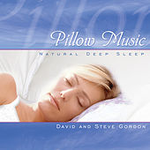 Play & Download Pillow Music by David and Steve Gordon | Napster