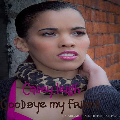 Play & Download Goodbye My Friend by Casey Leigh | Napster