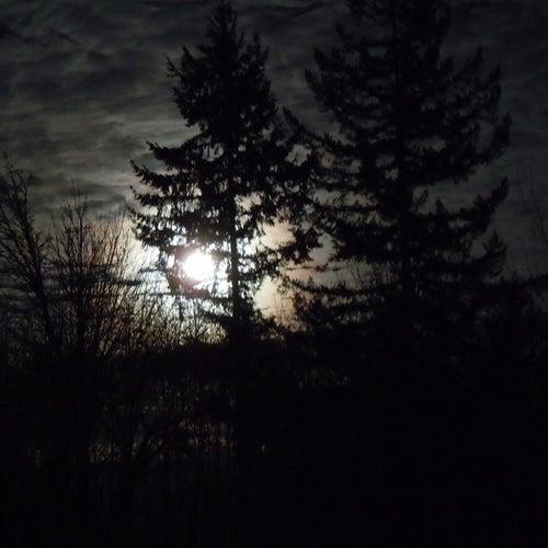 Play & Download The Dark by Ric Eittreim | Napster