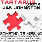Something's Missing by Jan Johnston